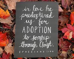 adopt 5