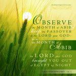 Happy New Year (God's Calendar)