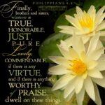Hallelujah, Praise Yehovah!